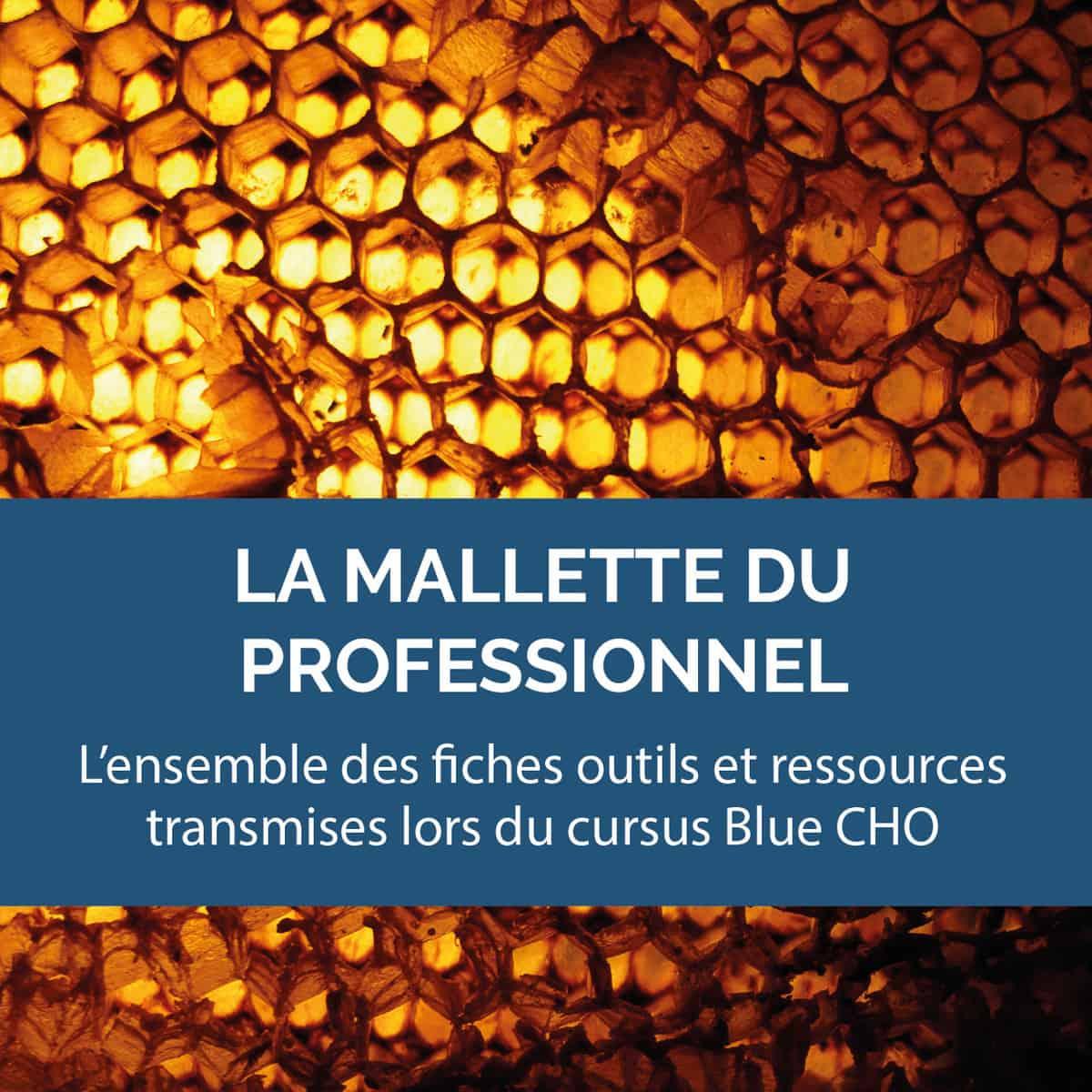 BCHOC1 Malette