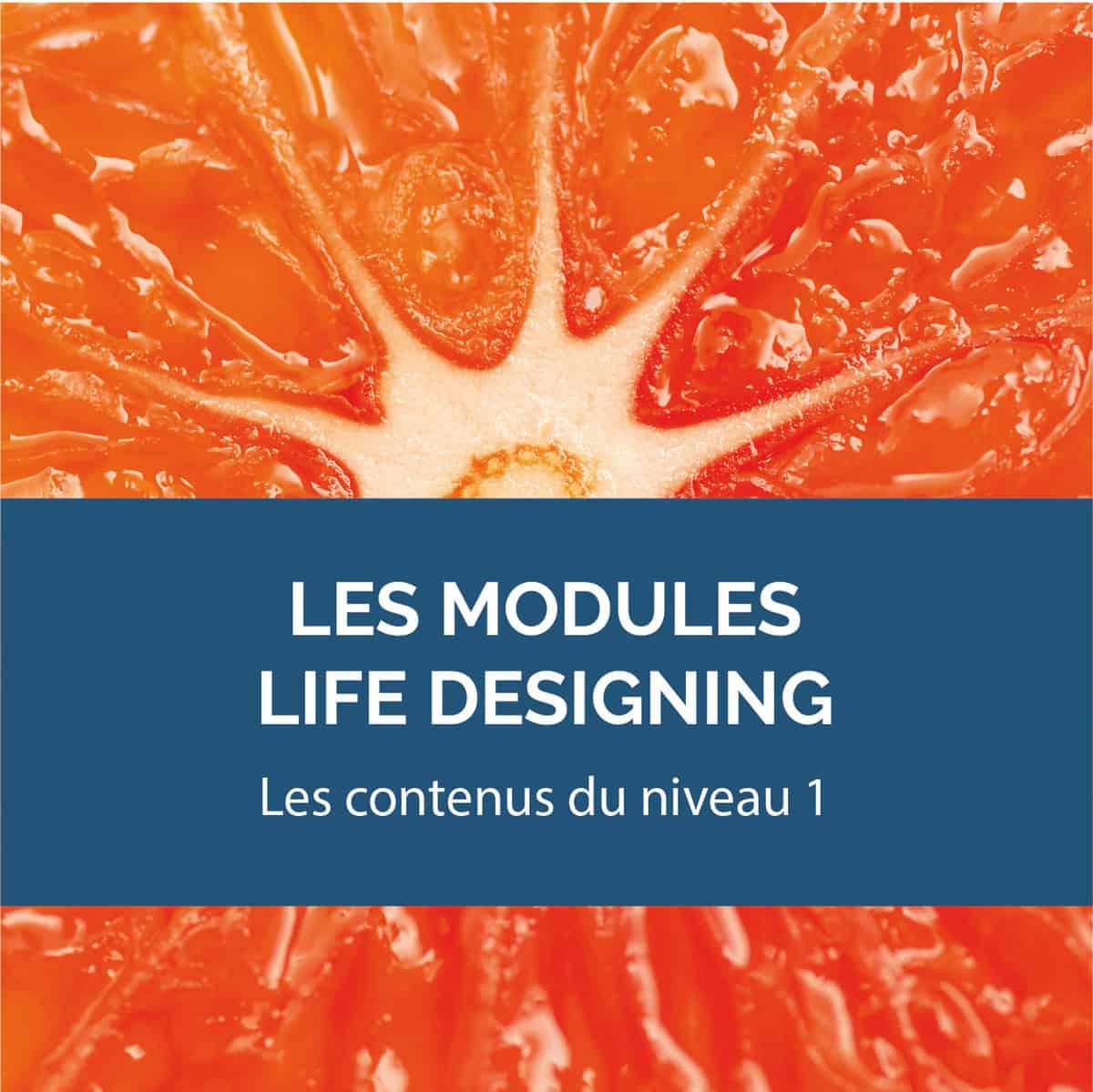 BCHOC2 Life designing