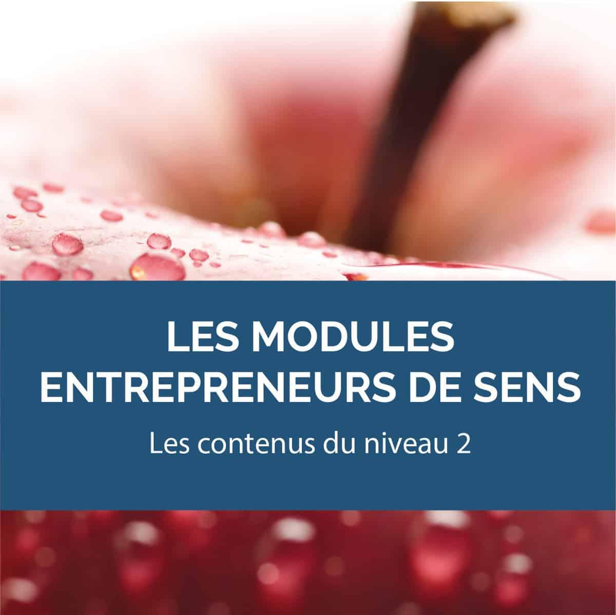 BCHOC3 Entrepreneurs